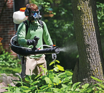 A Mosquito Squad employee treating a yard with a barrier spray that lasts for several weeks.