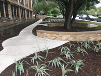 Cambridge Elementary landscaping