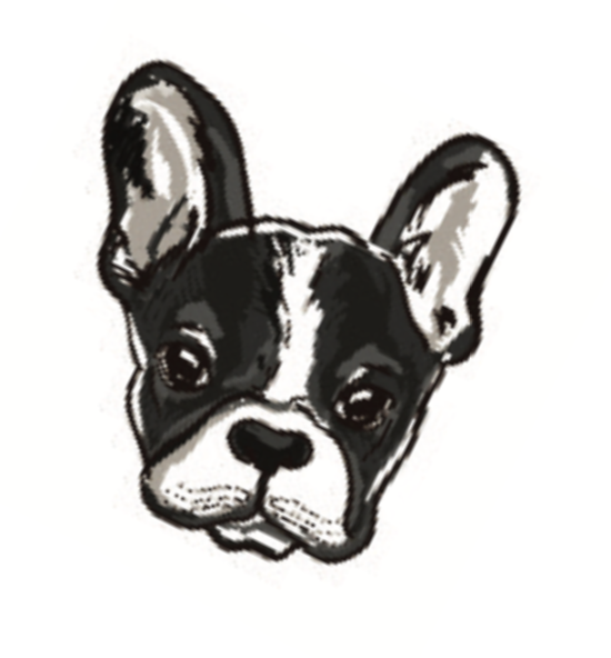 illustration of a dog face