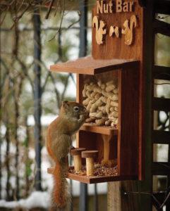 squirrelfeeder