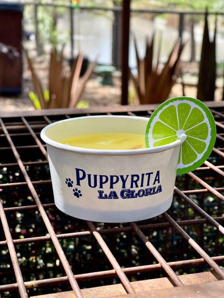 puppyrita1